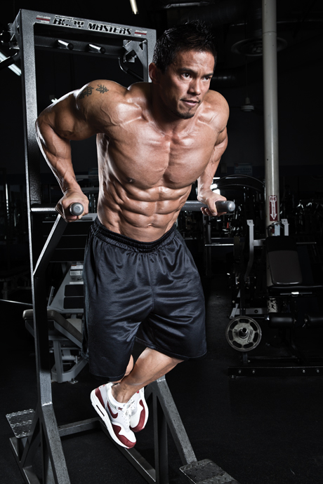 dips musculation