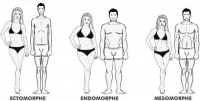 Morphotypes in bodybuilding